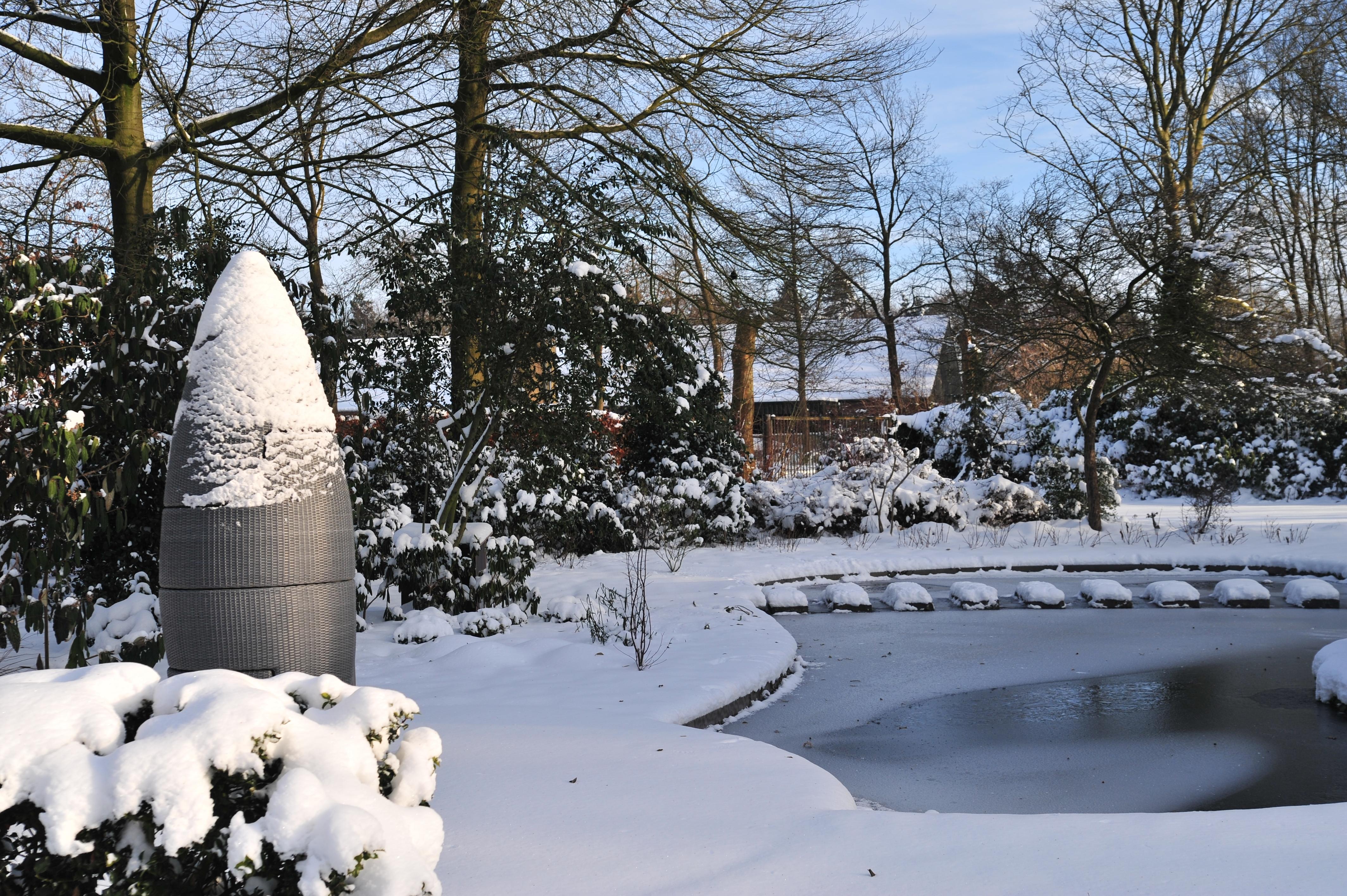 Snoeien in januari Hoveniersbedrijf G Nultenboek